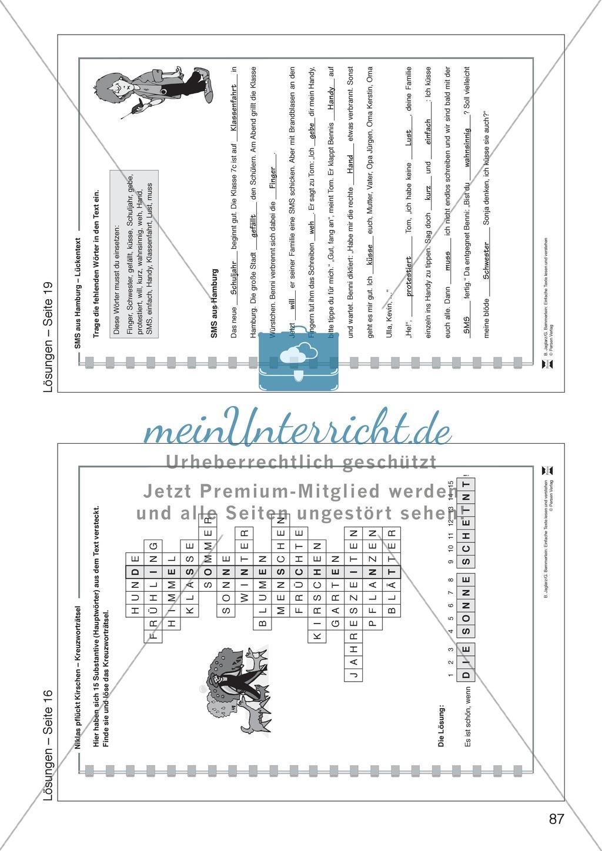 SMS aus Hamburg: Lesetext, Arbeitsblätter und Lösungen Preview 8