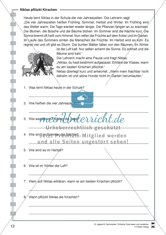 Niklas pflückt Kirschen: Lesetext, Arbeitsblätter und Lösungen Preview 0