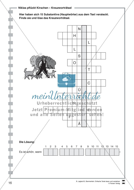 Niklas pflückt Kirschen: Lesetext, Arbeitsblätter und Lösungen Preview 4