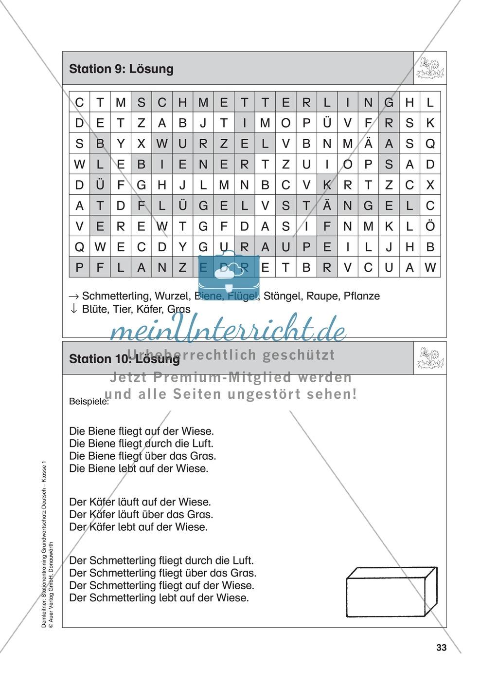 Stationentraining Wiese: Arbeitsblätter mit Lösungen, Diktat Preview 10
