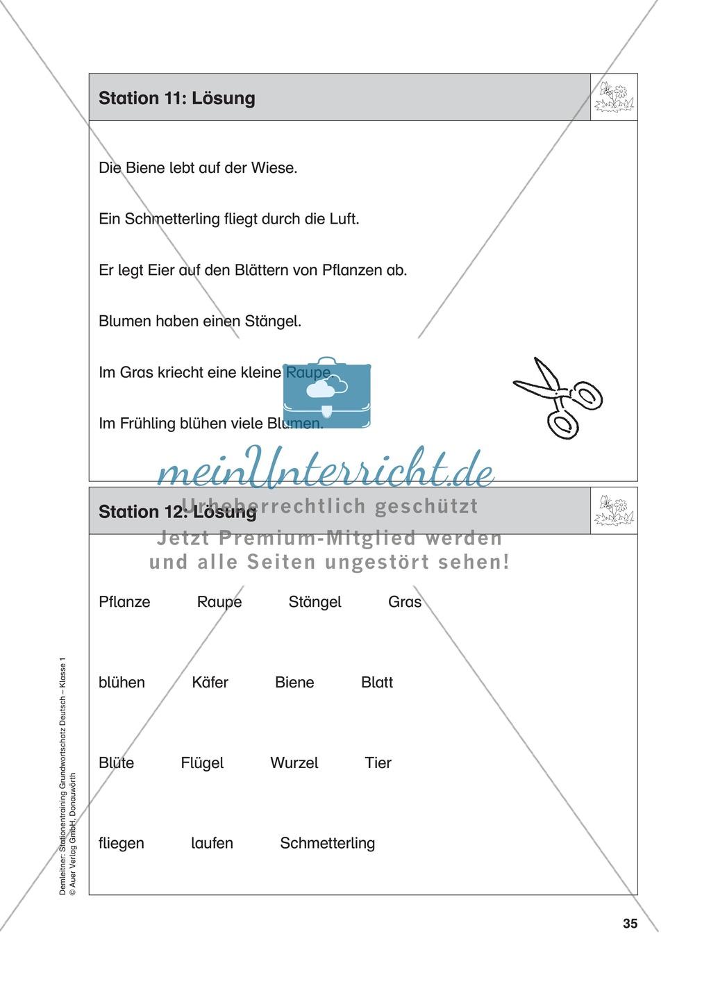 Stationentraining Wiese: Arbeitsblätter mit Lösungen, Diktat Preview 12