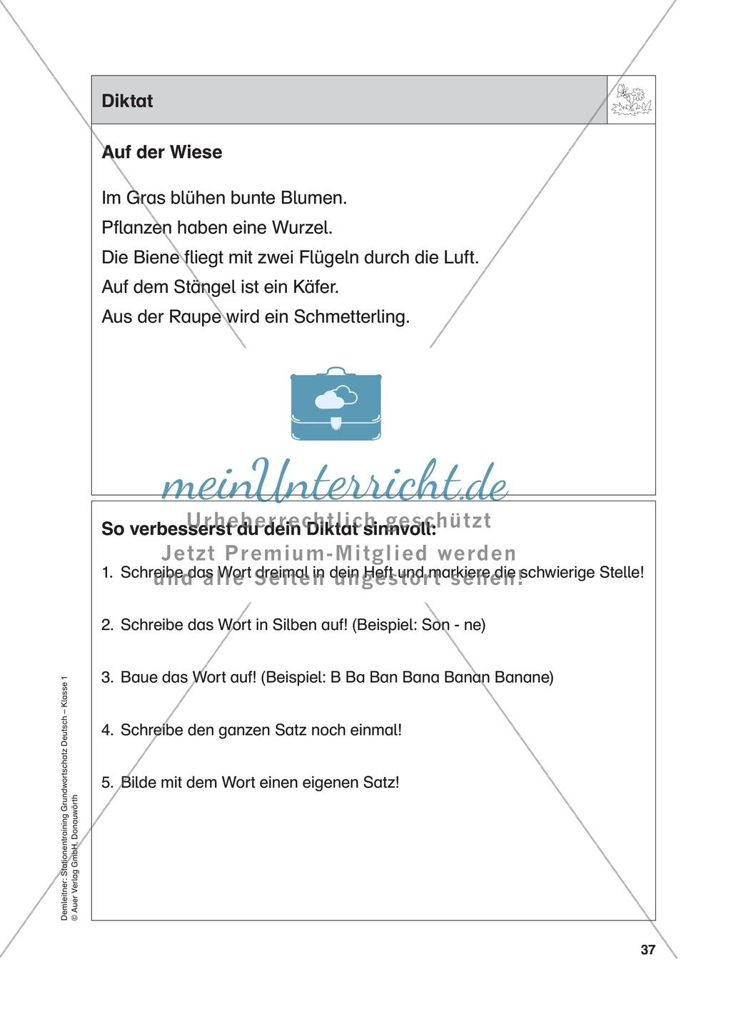 Stationentraining Wiese: Arbeitsblätter mit Lösungen, Diktat Preview 14