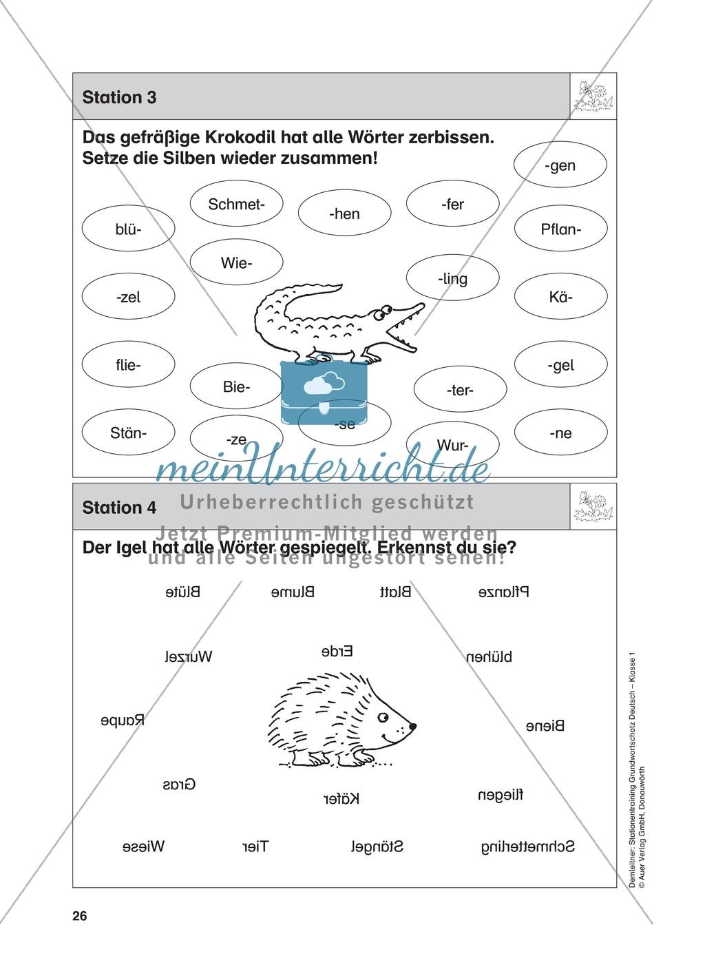 Stationentraining Wiese: Arbeitsblätter mit Lösungen, Diktat Preview 3