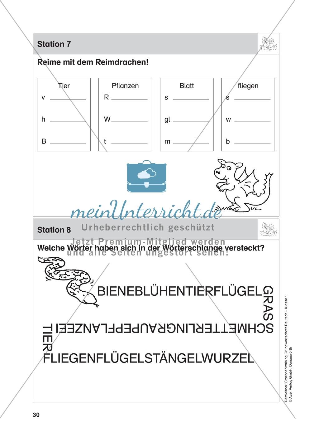 Stationentraining Wiese: Arbeitsblätter mit Lösungen, Diktat Preview 7