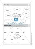 Stationentraining Familie: Arbeitsblätter mit Lösungen, Diktat Preview 5