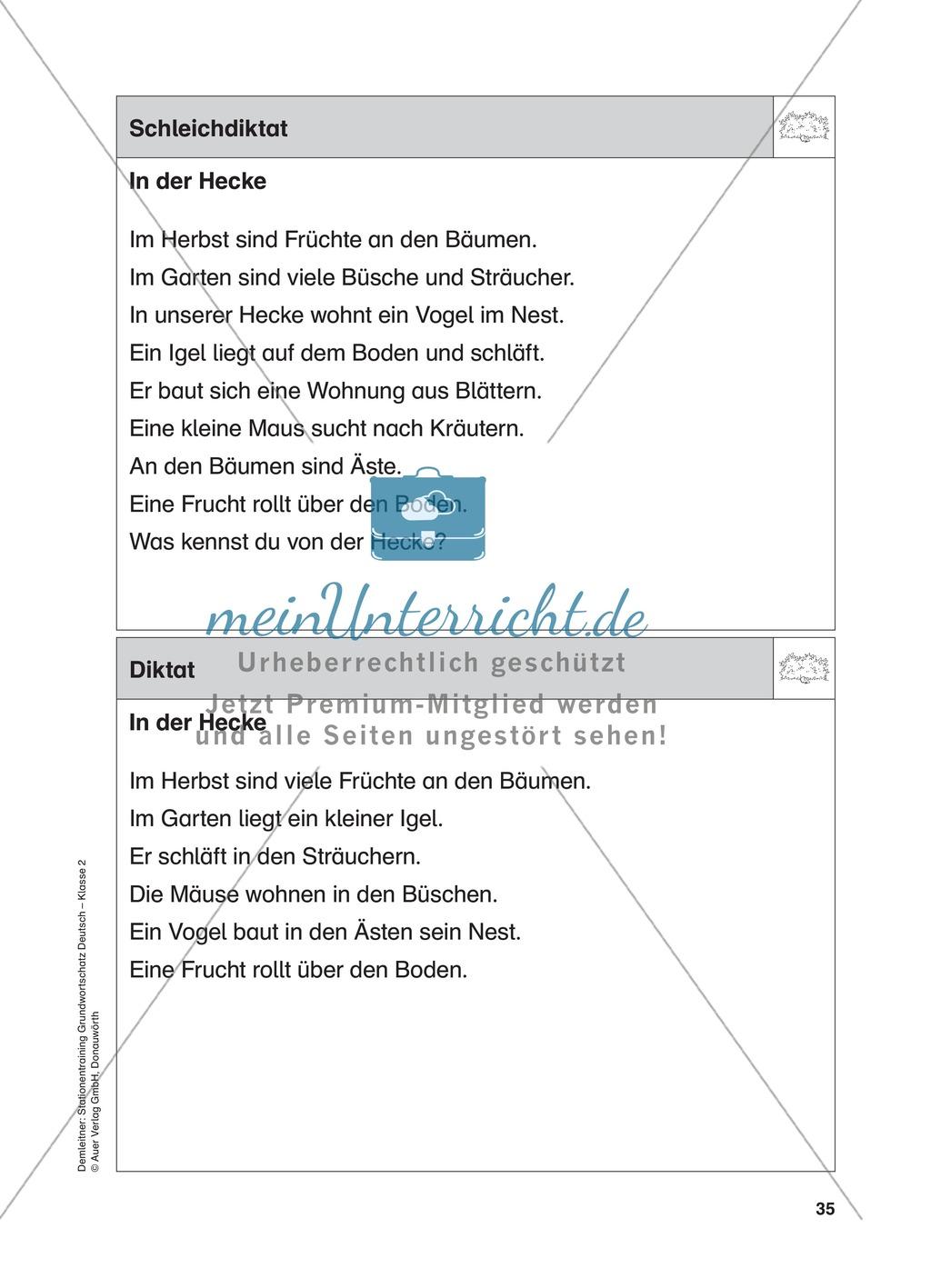 Stationentraining Hecke: Arbeitsblätter mit Lösungen, Diktat Preview 13