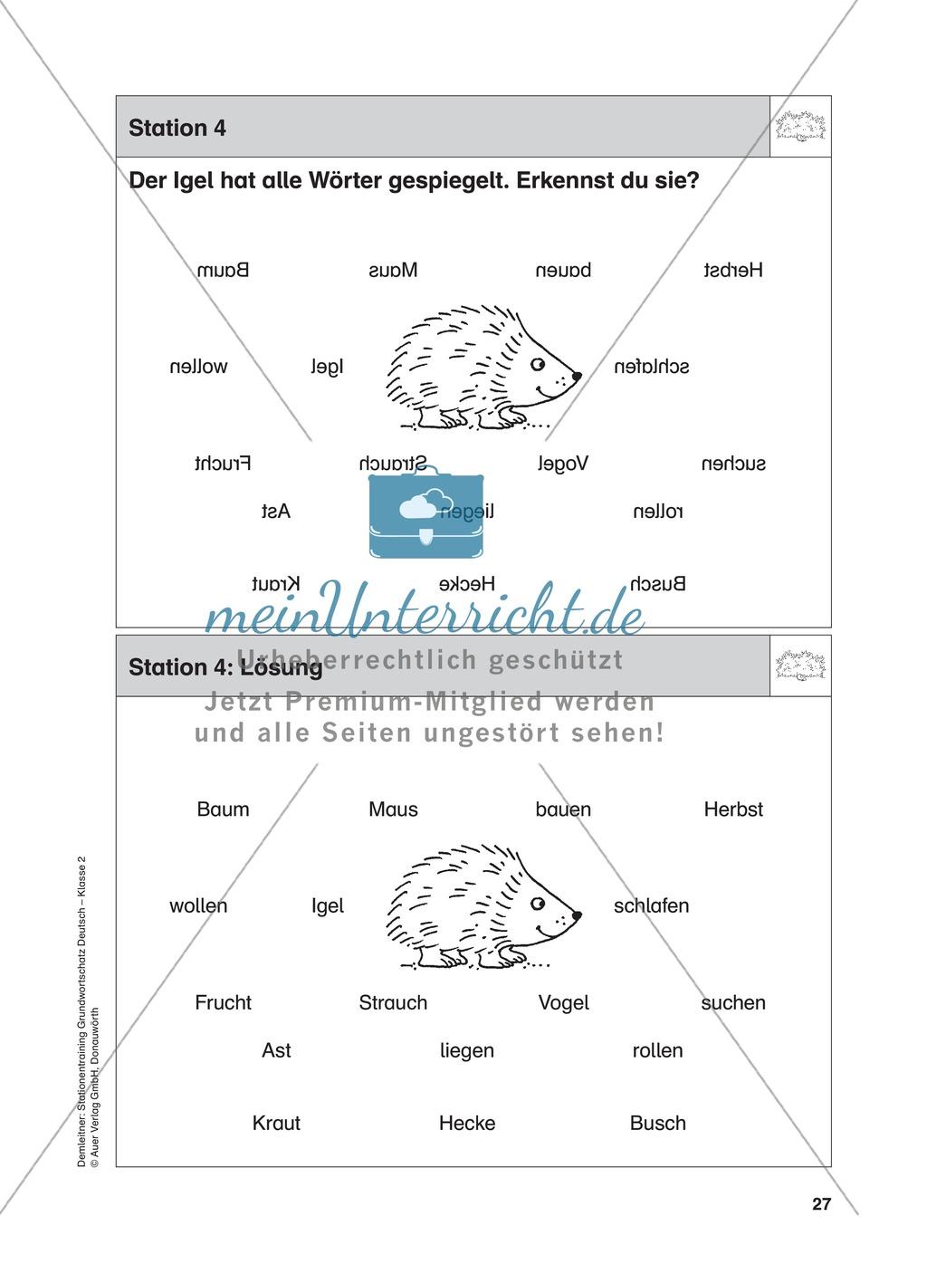 Stationentraining Hecke: Arbeitsblätter mit Lösungen, Diktat Preview 5