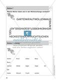 Stationentraining Hecke: Arbeitsblätter mit Lösungen, Diktat Preview 8