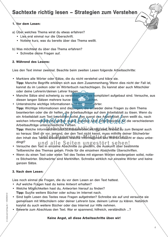 """Sachtexte verstehen - Strategien vermitteln: """"Diagramme und Tabellen"""" - Beobachtungsbogen + Fördertipps + Aufgaben Preview 3"""