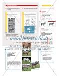 Fachwortschätze: Pferd und Fahrrad Preview 4