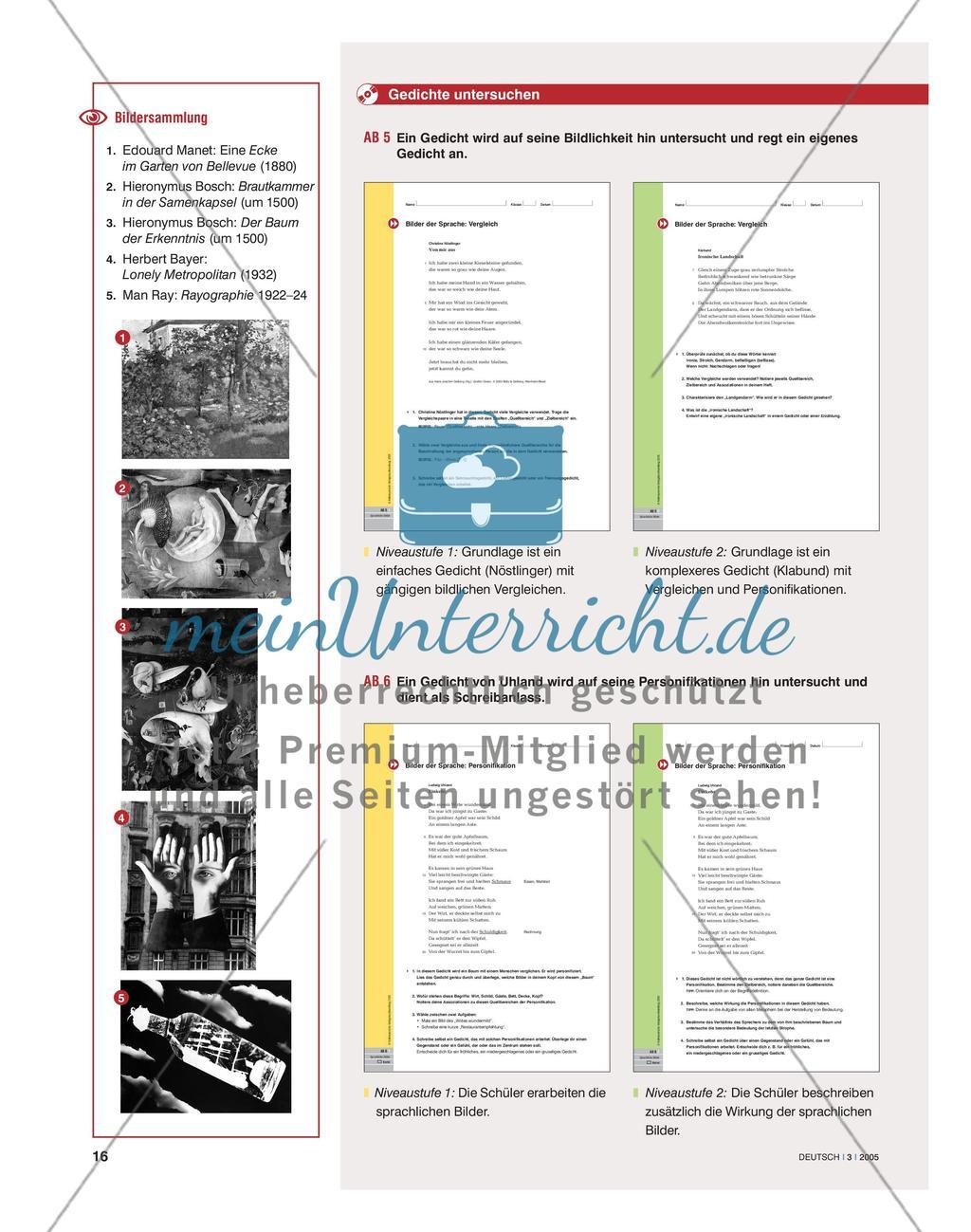 Sprachliche Bilder erfahren und interpretieren Preview 5