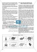 Aufgaben zur Silbe einschließlich Wortkonzept: Übungen, Spiele und Kopiervorlagen Preview 5