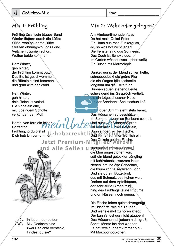 """Lyrische Texte - Gedichte schreiben und gestalten: """"Gedichte-Mix"""" + Einführung Preview 3"""