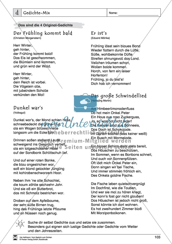 """Lyrische Texte - Gedichte schreiben und gestalten: """"Gedichte-Mix"""" + Einführung Preview 4"""