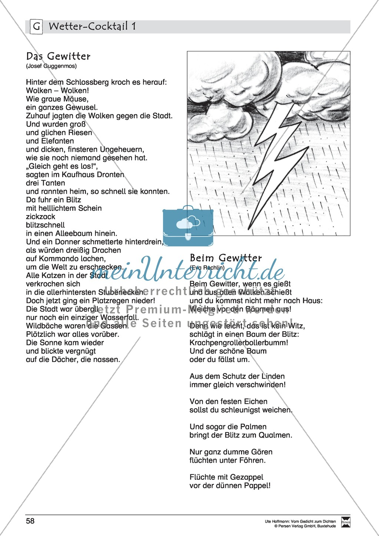 """Lyrische Texte - Gedichte lesen: """"Wetter - Cocktail"""" + Einführung Preview 6"""