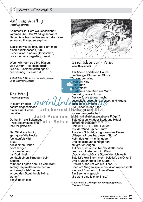 """Lyrische Texte - Gedichte lesen: """"Wetter - Cocktail"""" + Einführung Preview 8"""