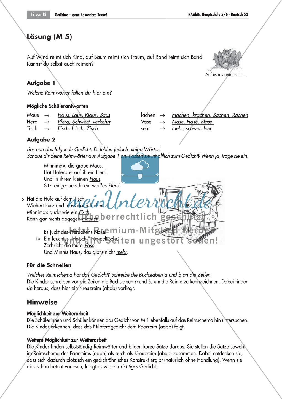 Unterrichtseinheit zum kennenlernen von Gedichten als besondere Texte mit verschiedenen Merkmalen. Mit Übungen und Lösungen. Preview 11