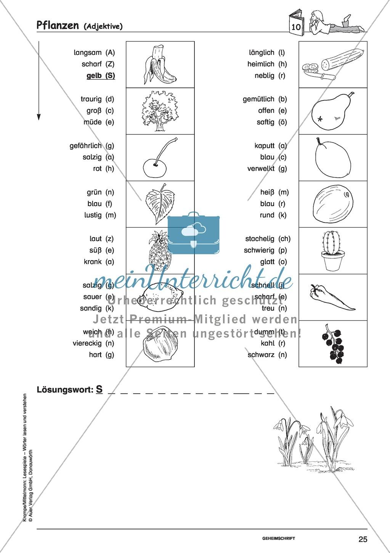 Einzelwörter mit Bild: Spielkarten + Lösung Preview 18