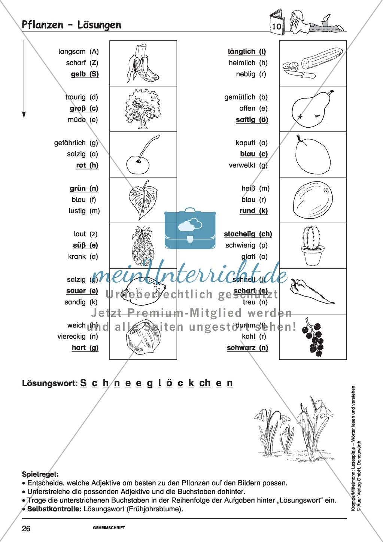 Einzelwörter mit Bild: Spielkarten + Lösung Preview 19