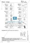 Einzelwörter mit Bild: Spielkarten + Lösung Preview 20