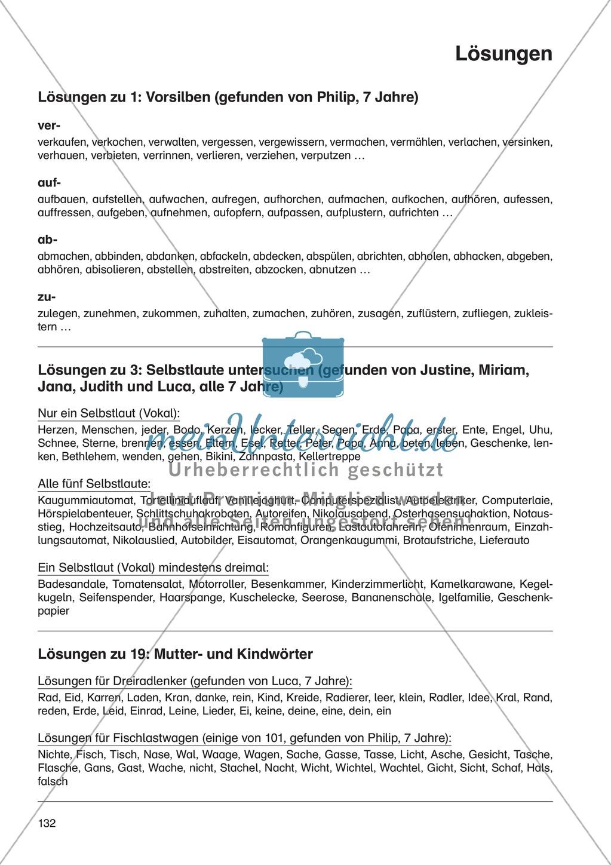 Sprache untersuchen - Vorsilben: Erläuterung + Übungen + Lösung Preview 5