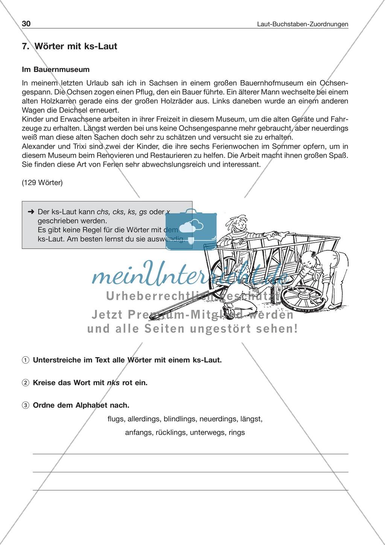 Laut-Buchstaben-Zuordnung: Wörter mit ks-Laut: Arbeitsblatt + Lösung Preview 0