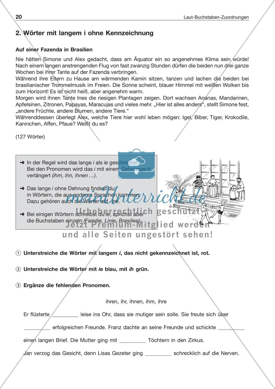 Laut-Buchstaben-Zuordnungen: Wörter mit langem i: Arbeitsblatt + Lösung Preview 0