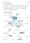 Groß- und Kleinschreibung bei Eigennamen: Arbeitsblatt + Lösung Preview 2