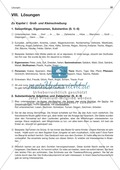 Groß- und Kleinschreibung: Substantivierte Adjektive + Zahlwörter: Arbeitsblatt + Lösung Preview 3
