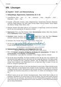 Groß- und Kleinschreibung: Satzanfänge, Eigennamen, Substantive: Arbeitsblatt + Lösung Preview 3