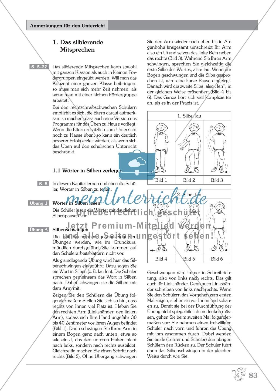 Wörter in Silben zerlegen: Übungen + Erläuterung Preview 2