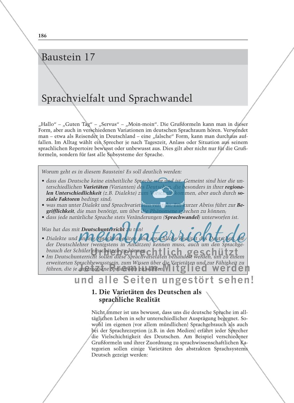 Sprachvielfalt und Sprachwandel: Informationstext für Lehrer Preview 0