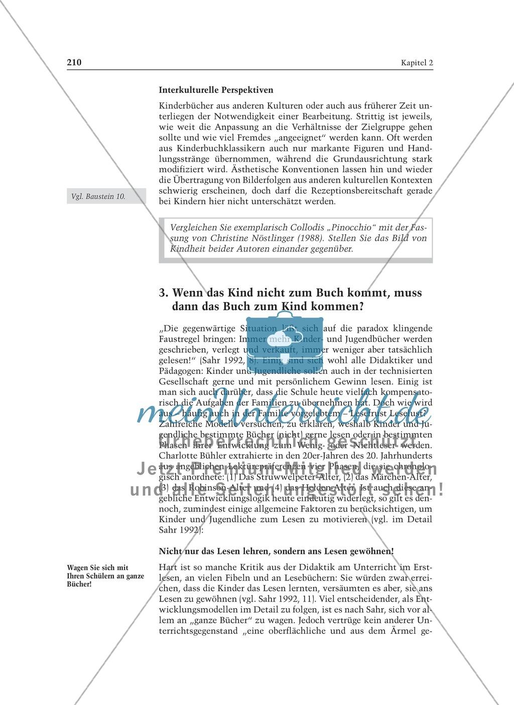 Kinder- und Jugendliteratur: Informationstext für Lehrer Preview 6