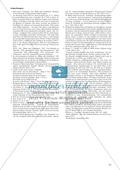 Politische Lyrik von Celan, Hermlin: Sachanalyse + didaktische Analyse + Verlaufsplanung + Weiterführung Preview 4