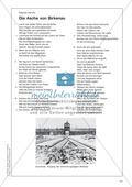 Politische Lyrik von Celan, Hermlin: Sachanalyse + didaktische Analyse + Verlaufsplanung + Weiterführung Preview 6