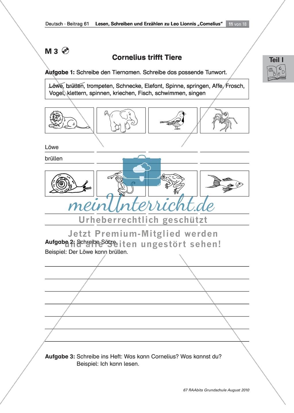 """Übungen zum Leseverstehen und produktive Methoden zur Erschließung der Bildergeschichte """"Cornelius"""" Preview 6"""