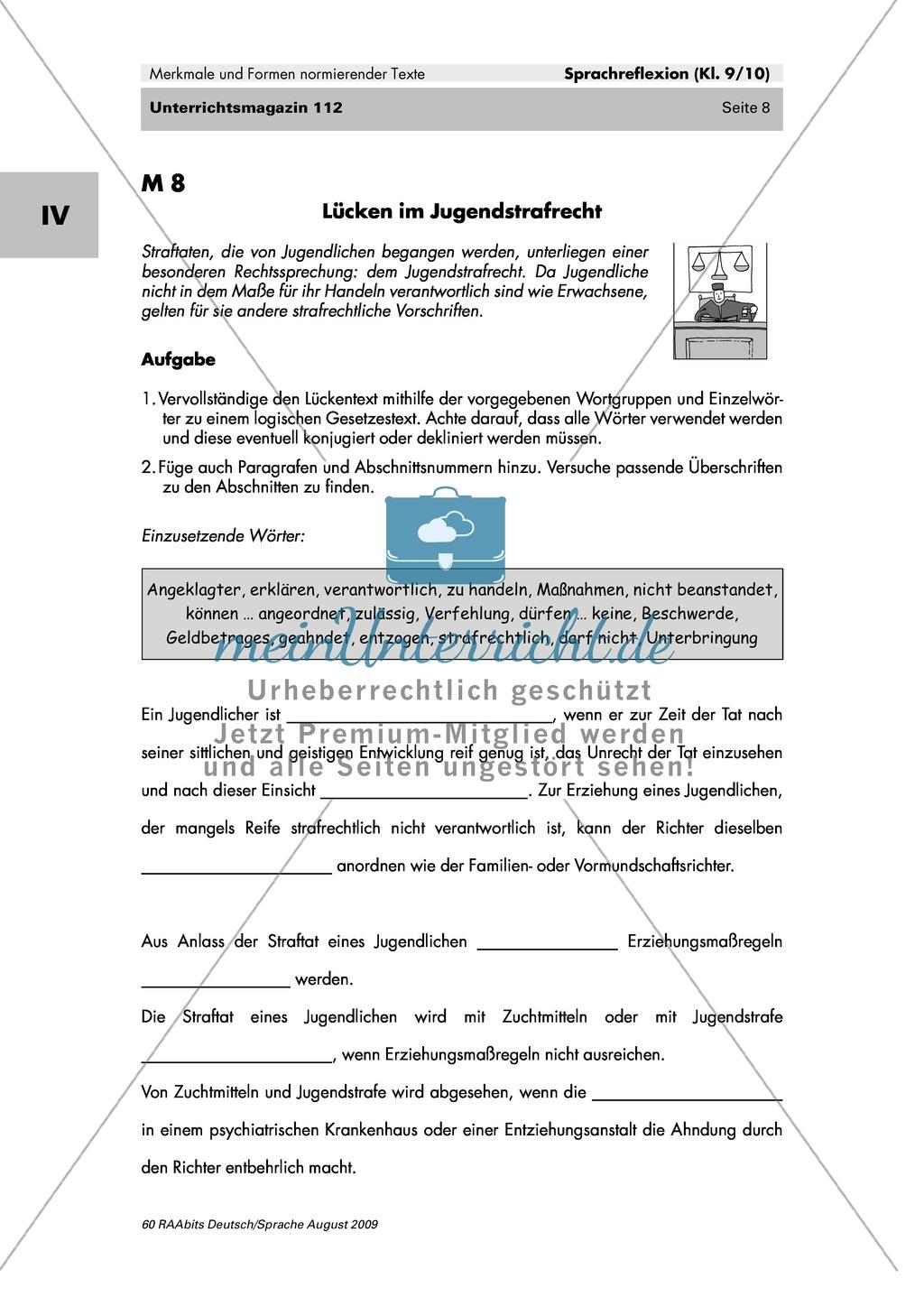 Gesetzestexte lesen und verstehen Preview 2
