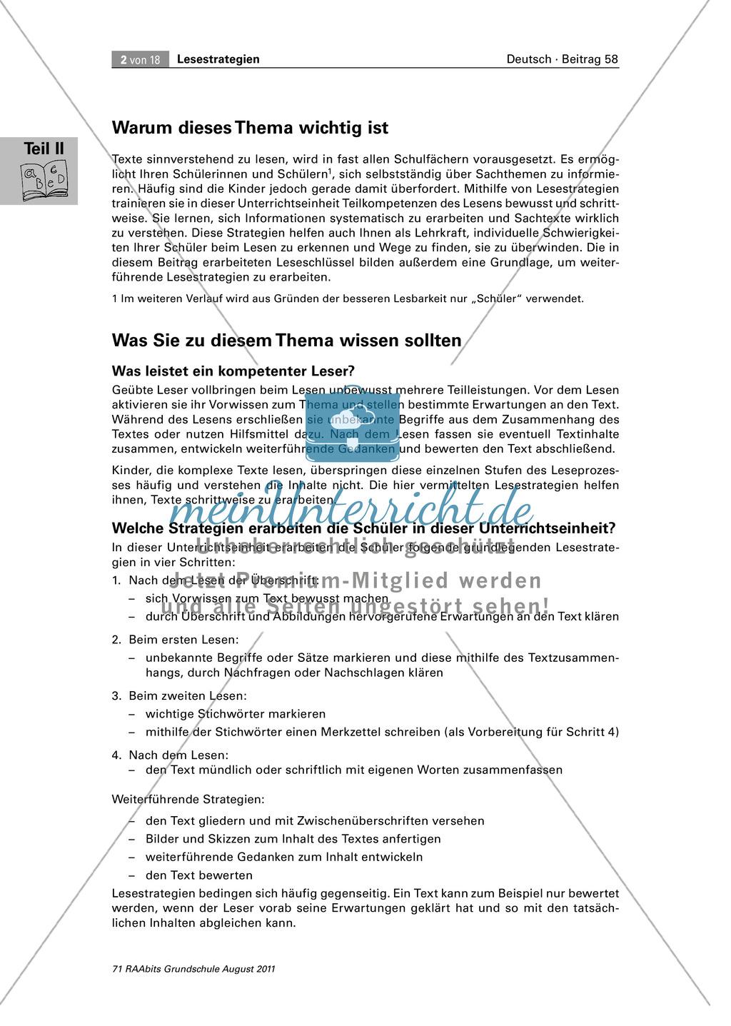 Die vier Schlüssel - Lesestrategien anhand von Sachtexten erarbeiten Preview 1