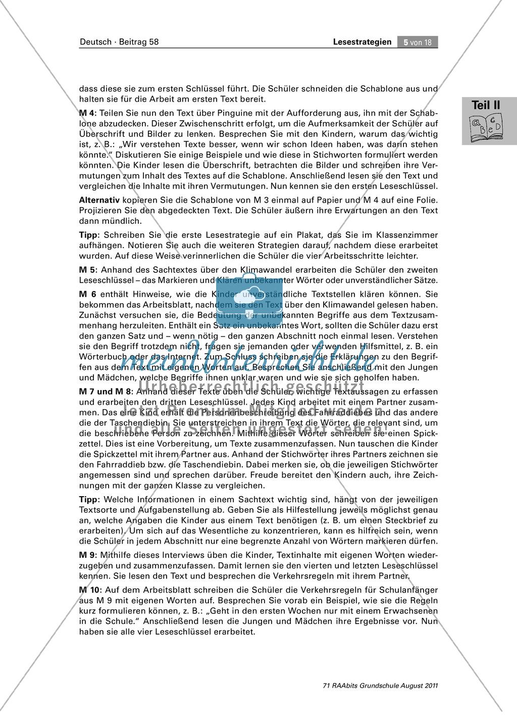 Die vier Schlüssel - Lesestrategien anhand von Sachtexten erarbeiten Preview 4