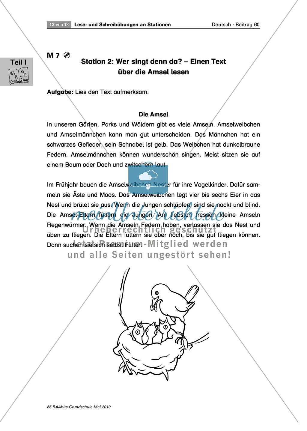 Stationenarbeit an einem Gedicht, einem Text und Bildern zum Thema u0026quot;Fru00fchlingu0026quot; - meinUnterricht.de