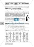 Warum tragen Pinguine keine Wollsocken? Eine individuelle Grammatik-Wiederholung zu den Wortarten Preview 18