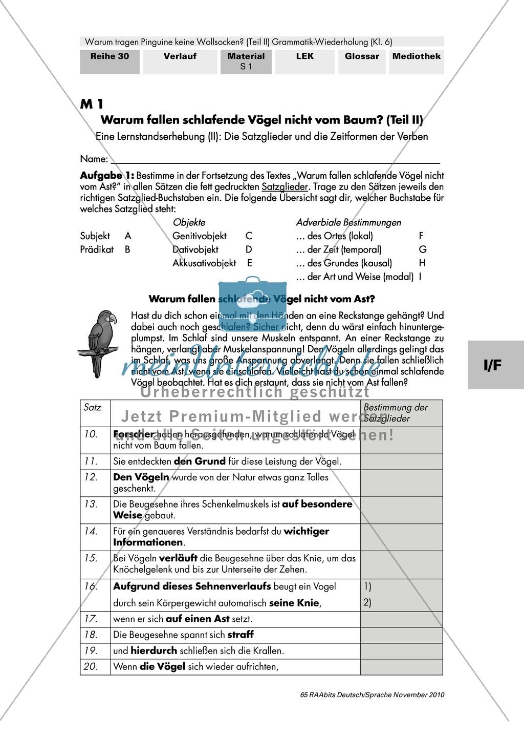 Lernstandserhebung und Auswertung zu Satzglieder und Zeitformen der Verben Preview 0