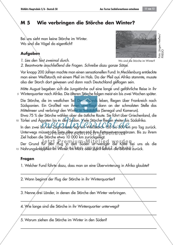 Aus Sachtexten Informationen entnehmen: Text und Fragen zum Thema ...