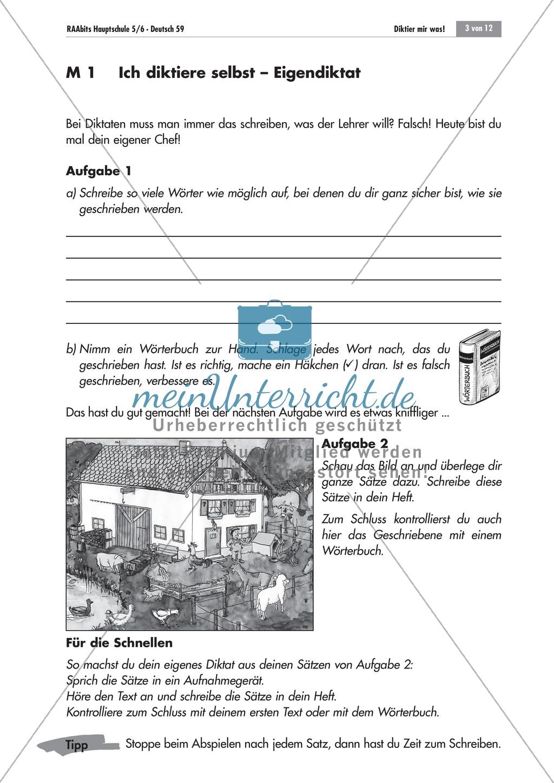 Übungen und Strategien zum korrekten Schreiben: Diktate Preview 1
