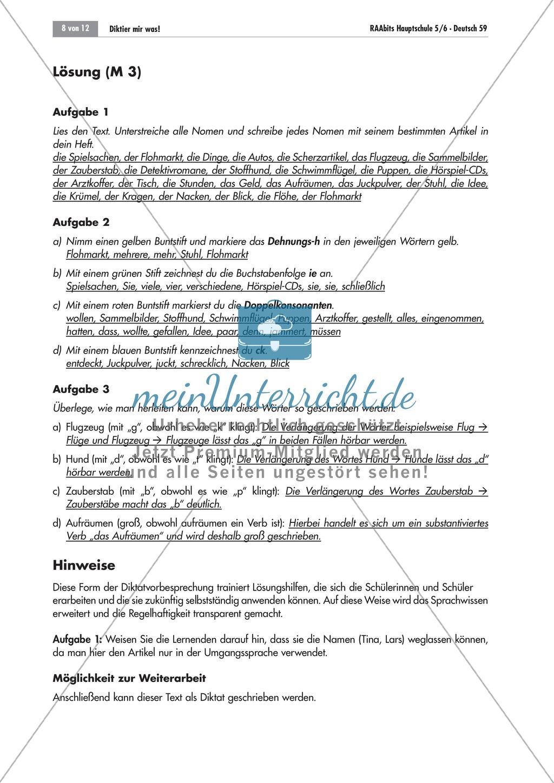 Übungen und Strategien zum korrekten Schreiben: Diktate Preview 6
