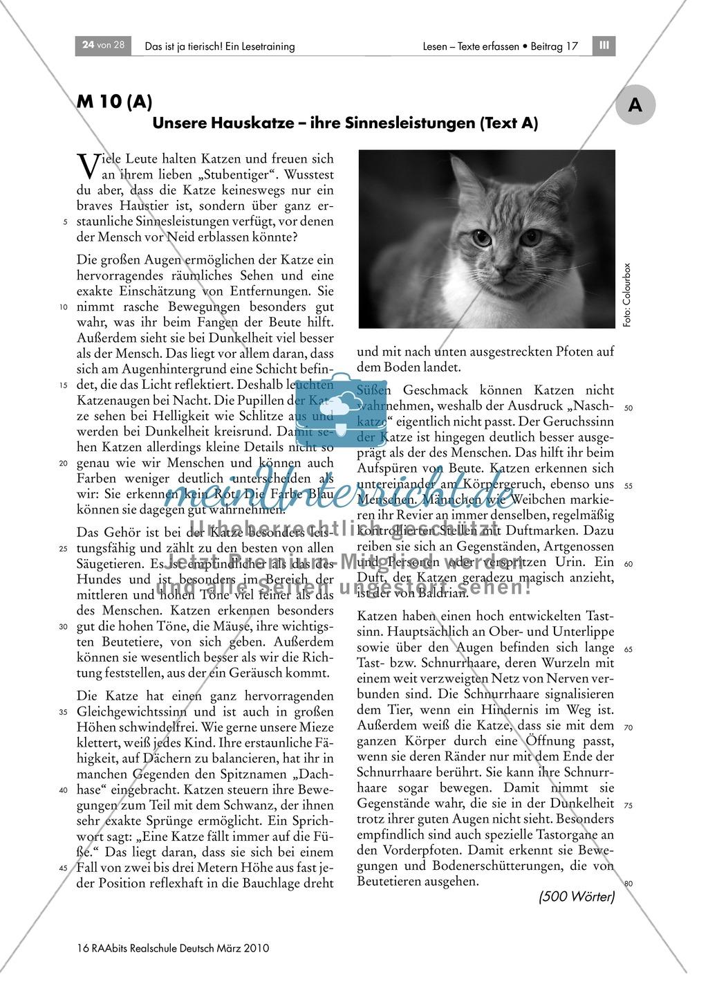 Leseübungen anhand von Sachtexten über Tiere: Thema Hauskatzen ...