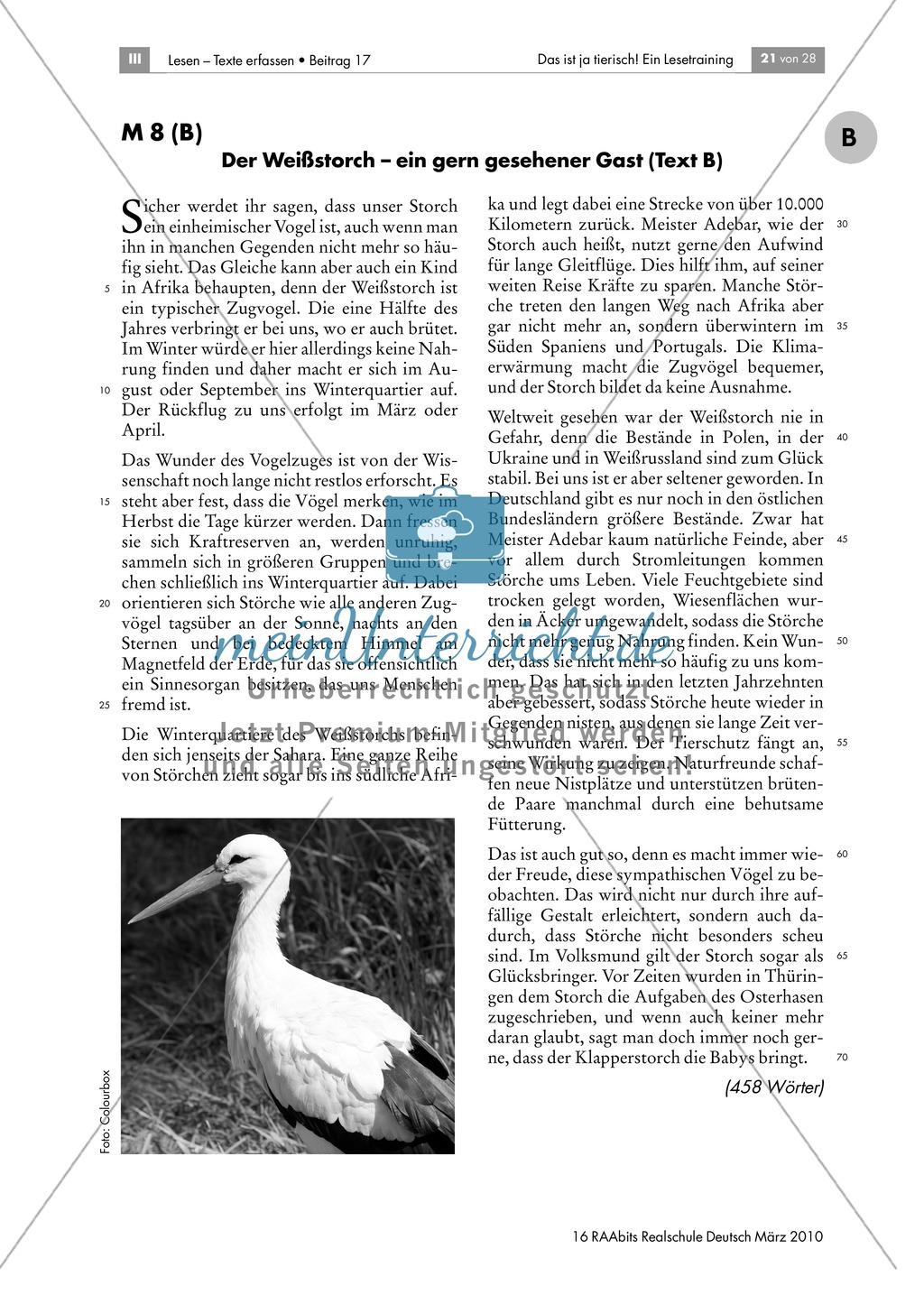 Leseübungen anhand von Sachtexten über Tiere: Thema Störche Preview 2