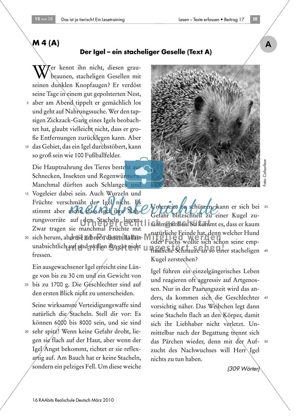 Leseübungen anhand von Sachtexten über Tiere: Thema Igel ...
