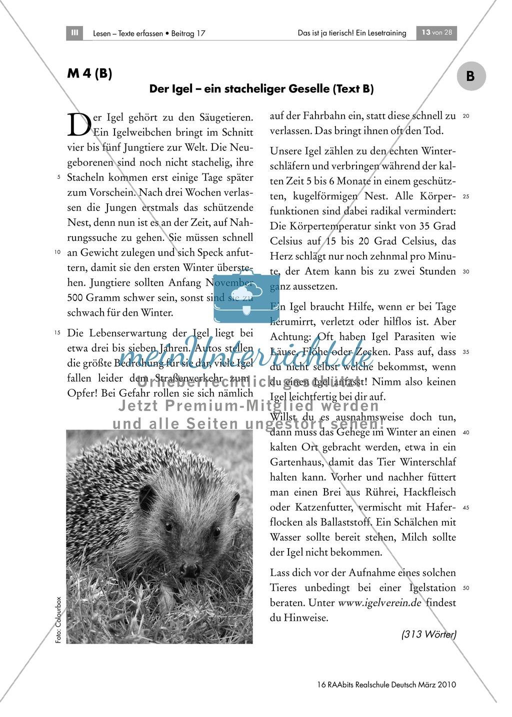 lese252bungen anhand von sachtexten 252ber tiere thema igel