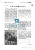 Leseübungen anhand von Sachtexten über Tiere: Thema Igel Preview 3